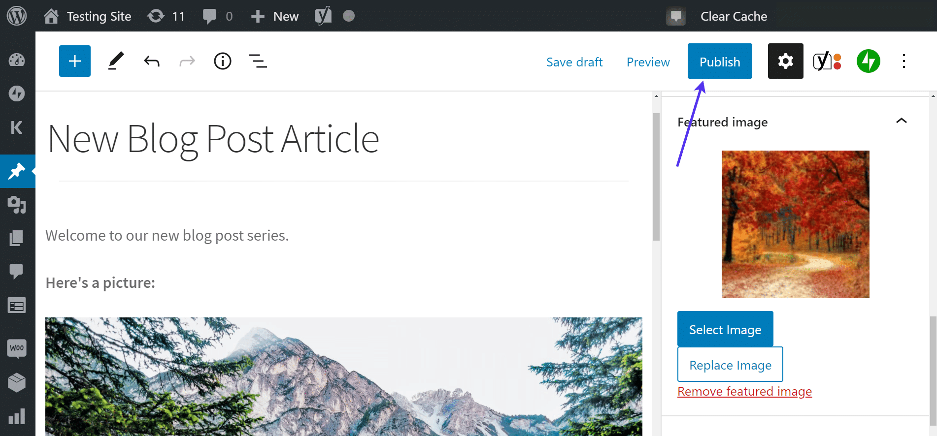 Hit the publish button to cure WordPress Featured Image Not Showing issue